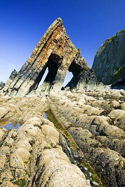 Black Church Rock near Clovelly in Devon, England, UK,  June.
