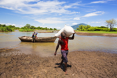 Food ferried across a river near Phalombe after the bridge was washed away. Malawi, March 2015.
