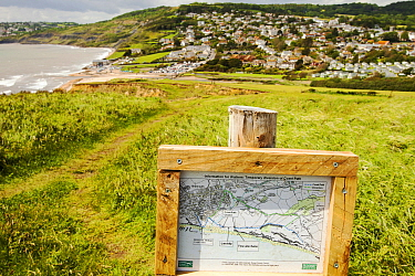 Landslip on the South West Coast Path at Charmouth. This section of the Jurassic Coast has always been prone to landslips due to the unstable nature of the Jurassic clays and shales, but increased hea...