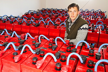 Crofter and Eigg Electric employee amongst the array of backup batteries that store sufficient to power the island for 24 hours.  Isle of Eigg is powered by renewable energy and backup batteries store...