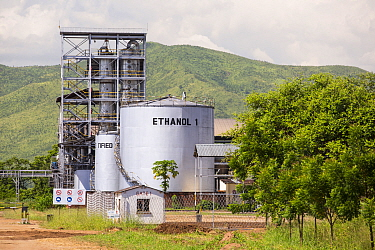 Ethanol plant at Chikwawa in the Shire Valley, Malawi, March.
