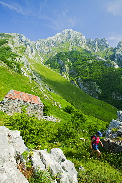 Woman walking above the mountain village of Sotres, Picos de Europa National Park, northern Spain. June 2005
