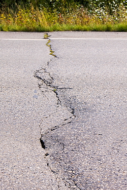 Road in Fairbanks, Alaska collapsing into the ground due to global warming induced permafrost melt. Alaska, USA. August 2004