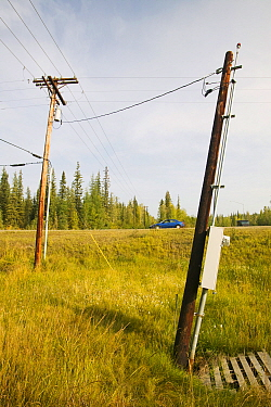 Electric pylons in Fairbanks, Alaska collapsing into the ground due to global warming induced permafrost melt. Alaska, USA. August 2004