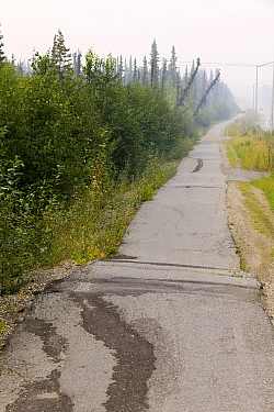 Pavement in Fairbanks Alaska collapsing into the ground due to global warming induced permafrost melt. Alaska, USA. August 2004
