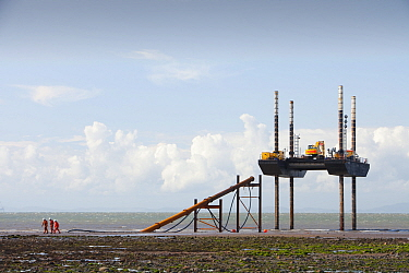 Jack up barge working on the foreshore of the Solway Firth near Workington, installing the power cable that will carry the electricity from the new Robin Rigg offshore wind farm. Solway Firth, Scotlan...