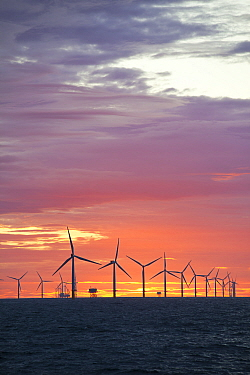 The Walney Offshore windfarm project, at sunset. Off Barrow in Furness, Cumbria, UK, July 2011