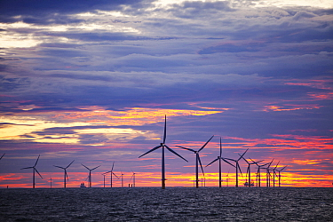 The Walney Offshore windfarm project, off Barrow in Furness, Cumbria, UK, at sunset. July 2011