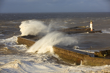 Storm waves from an extreme low pressure system batter Whitehaven harbour, Cumbria, UK, December 2014.