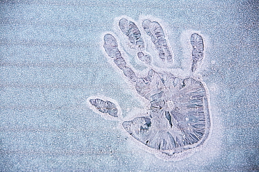 Frozen hand print on an iced over car window, Ambleside, Cumbria UK. December 2008