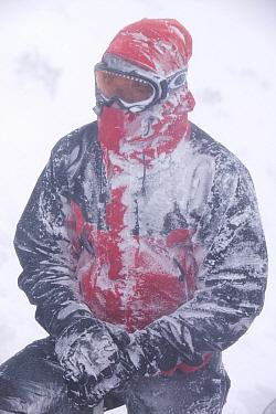 Mountaineer in blizzard, Cairngorm Scotland UK. February 2007