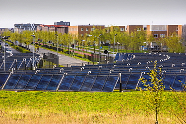 Sun Island in Almere, which is the Netherlands youngest town, in Flevoland, which was reclaimed from the sea. This planned city is very green, with space heating provided from a nearby combined heat a...