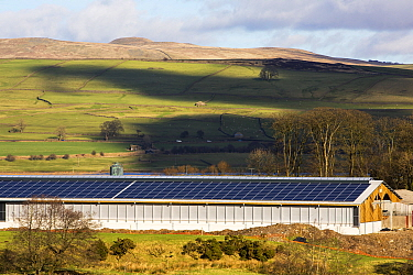 Solar panels on a new cattle shed, Wigglesworth Hall Farm. Yorkshire Dales, Lancashire, England, UK February 2016
