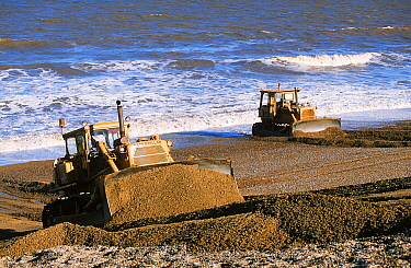 Bulldozers rebuilding the storm beach in Cley, Norfolk, England, UK.