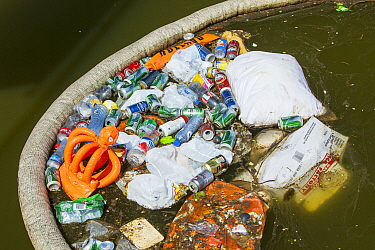 Rubbish up against a litter trap on a canal in Amsterdam, Netherlands. May 2013