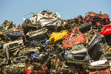 Old cars at a scrap metal merchants on the docks in Amsterdam, Netherlands. May 2013