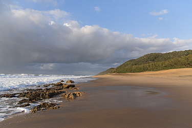 Cape Vidal beach in early morning, Isimangaliso Wetland Park. iSimangaliso Wetland Park UNESCO World Heritage Site, and RAMSAR Wetland. South Africa, August 2017.