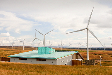 Whitlee wind farm on Eaglesham Moor just south of Glasgow in Scotlasnd, UK, is Europes largest onshore wind farm with 140 turbines and an installed capacity of 322 MW, enough energy to power 180,000 h...