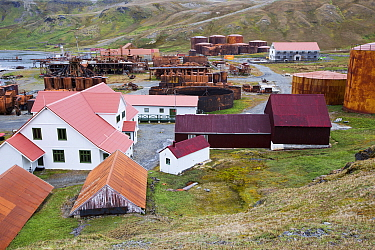 Old whaling station at Grytviken, South Georgia. In its 58 years of operation, it handled 53,761 slaughtered whales, producing 455,000 tons of whale oil and 192,000 tons of whale meat. February 2014