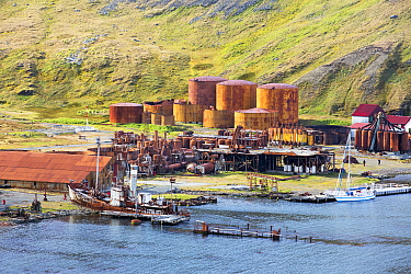 The old whaling station at Grytviken on South Georgia. In its 58 years of operation, it handled 53,761 slaughtered whales, producing 455,000 tons of whale oil and 192,000 tons of whale meat. February...