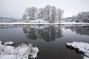 Reflections in the River Brathay after an overnight fall of snow in the Langdale Valley, Lake District, England, UK. January 2016