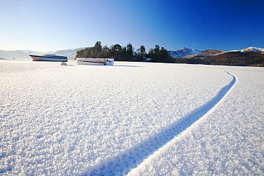 Derwent Water completely frozen over with cycle tracks, Keswick, Lake District, England, UK, December 2010.