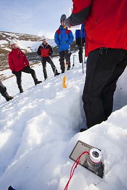 Member of the Scottish Avalanche Information Service demonstrates how to assess avalanche risk on  Cairngorm in the Cairngorm National Park in Scotland UK. February 2009
