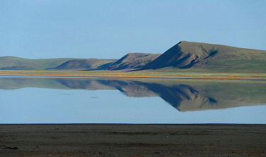 Lake Barun-Torey, Daurian Nature Reserve near Russia's  border with Mongolia. Daurian Steppes UNESCO World Heritage Site. June 2016.