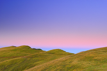 Alpine grassland, Leota mountain range at dawn, Arges County, Carpathian Mountains, Romania, August, 2011