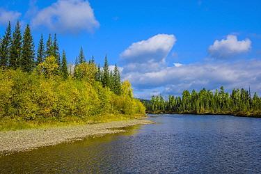 Landscape of the upper reaches of the Lena River, Baikalo-Lensky Reserve, Siberia, Russia, September 2017