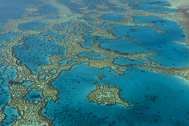 Aerial view of Hardy Reef, Great Barrier Reef, August 2011