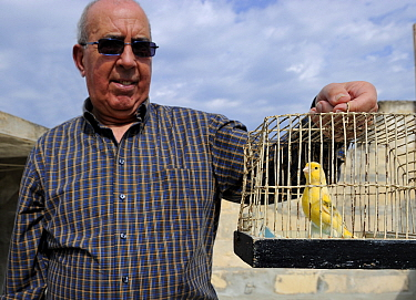 Albert Dimech, with pet Canary (Serinus canaria) Malta, March 2012.