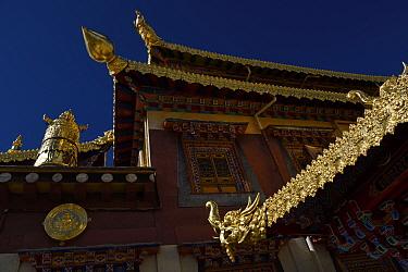 Roof decoration of the Tibetan Lamaistic Buddhist Songtsam Monastery, Shangri-La or Xianggelila,  Zhongdian County, Yunnan, China. April 2018.