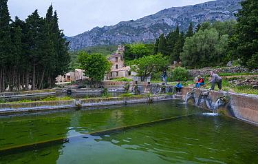Fish hatchery, Aigua Natura. Toscar Valley, The Ports Natural Park, Terres de l'Ebre, near Tarragona, Catalonia, Spain. April 2017.