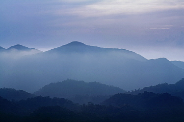 Misty landscape with mountains in distance, from a high lookout in  Intervales State Park, Sao Paulo, Atlantic Forest South-East Reserves, UNESCO World Heritage Site, Brazil.