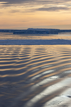 Grease ice forming on the on the water's surface in Weddell Sea, Antarctica. Grease ice is a very thin, soupy layer of frazil crystals clumped together, which makes the ocean surface resemble an oil s...