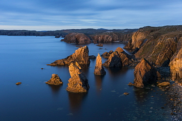 Sea stacks at Mangurstadh / Mangersta, Isle of Lewis, Outer Hebrides, Scotland, UK. October, 2013.