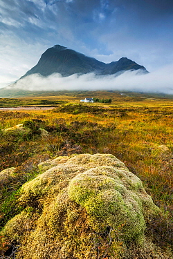 Buachaille Etive Mor, Rannoch Moor, Highlands, Scotland, UK. September 2013.