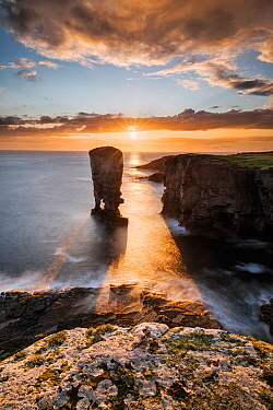 Yesnaby Stack, Orkney, Orkney Islands, Scotland, UK. August 2014.