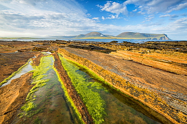 Warbeth Beach, Stromness, Orkney with view to Hoy. Orkney Islands, Scotland, UK. August 2014.