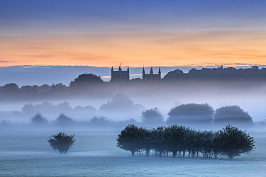 Wimborne Minster at dawn, Dorset, England, UK. August 2015.