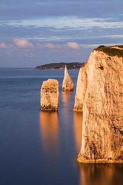The Pinnacles, Ballard Down, Jurassic Coast, Isle of Purbeck, Dorset, England, UK. August 2017.