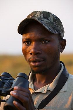 Shoebill (Balaeniceps rex)  conservationist Elijah Mofya, Bengweulu swamp.   Zambia