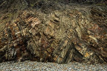 Folded Carboniferous age sandstones, Hartland Quay, Devon, UK, May