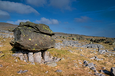A Glacial Erratic at Norber near Austwick, Yorkshire, UK. This is one of the Norber erratics, where blocks of older Silurian sandstone were left on top of younger Carboniferous limestone by a retreati...