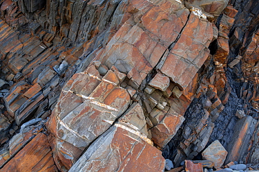 En echelon tension (or parallel) cracks in Carboniferous age turbidite sandstones, Bude, Cornwall, UK, May. The tension cracks have formed in the more competent sandstones as the rocks were folded. T...