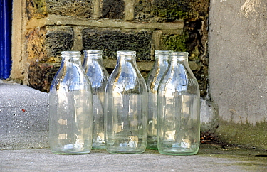 Five empty glass milk bottles on doorstep, Highbury, London Borough of Islington England UK