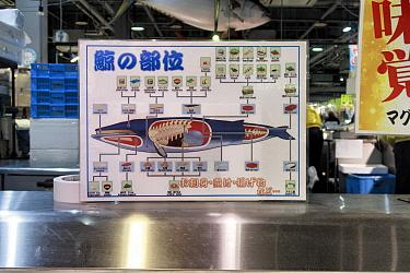 Diagram showing the origin of different whale meat cuts at Tore Tore Market, Shirahama, Wakayama Prefecture, Kansai, Honshu, Japan. February 2018.