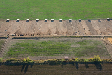 Aerial view of paddocks and shelters for Camargue horses used for riding, Camargue, France. October.