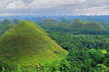 Chocolate Hills on Bohol Island, Philippines, November 2001.